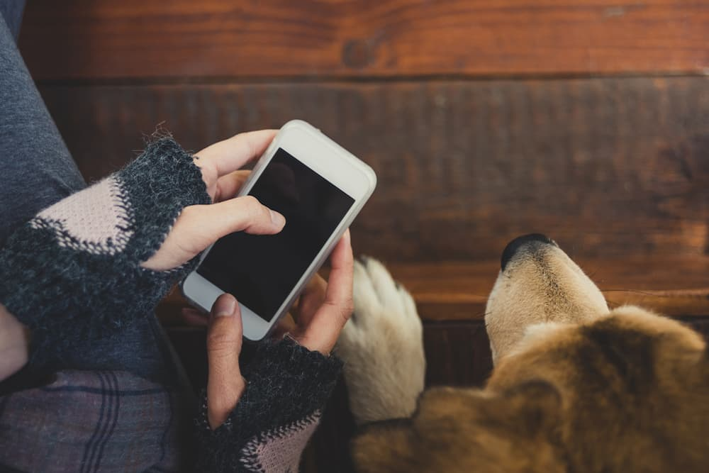Girl sitting while on her phone next to her dog