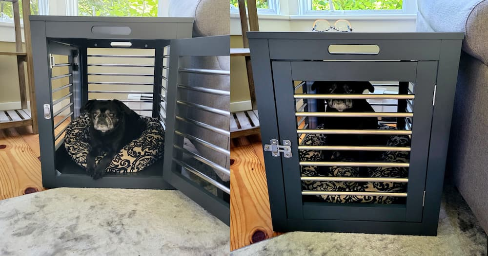 Moderno dog crate review author photo 1