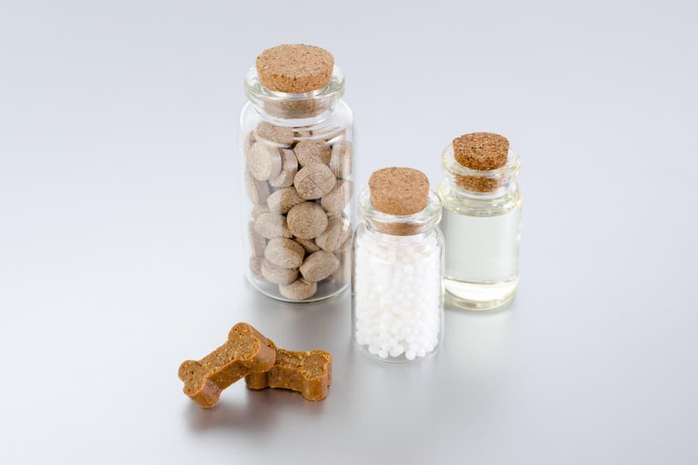 Dog vitamins in a few different forms liquid, chews, treats