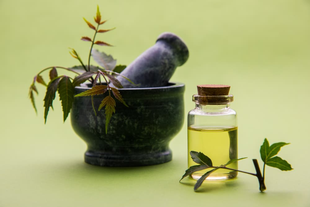 Bottle of neem oil with neem plants next to it