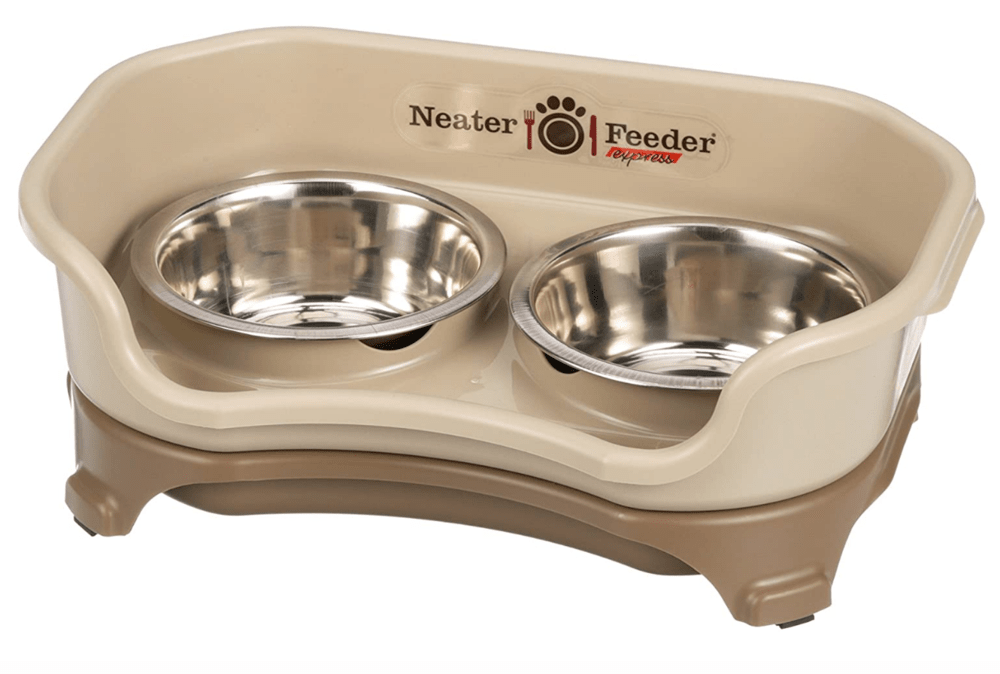 Best elevated dog bowl from neater feeder
