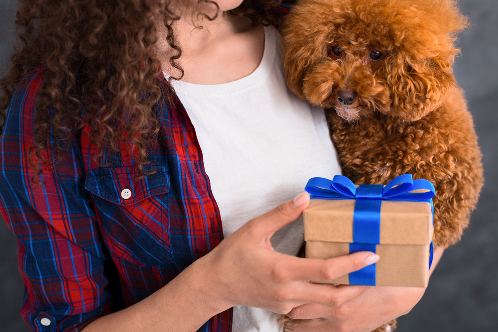 9 Best Gifts for Dog Lovers