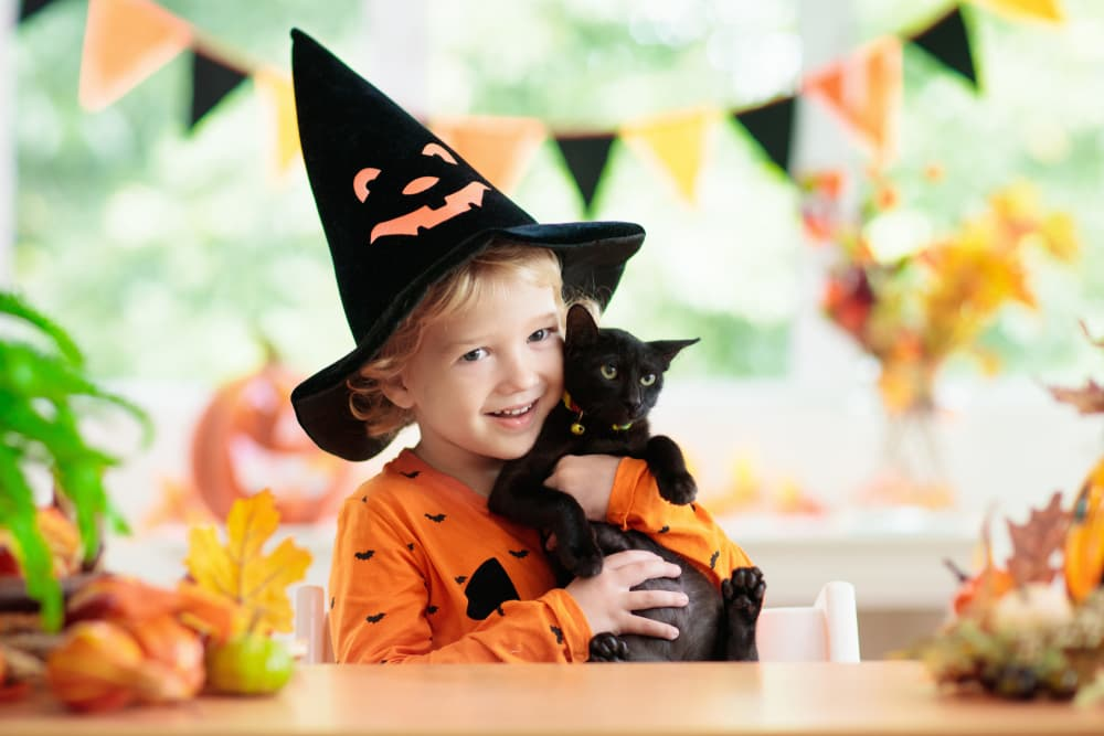 Kid holding black kitten with Halloween and fall decorations