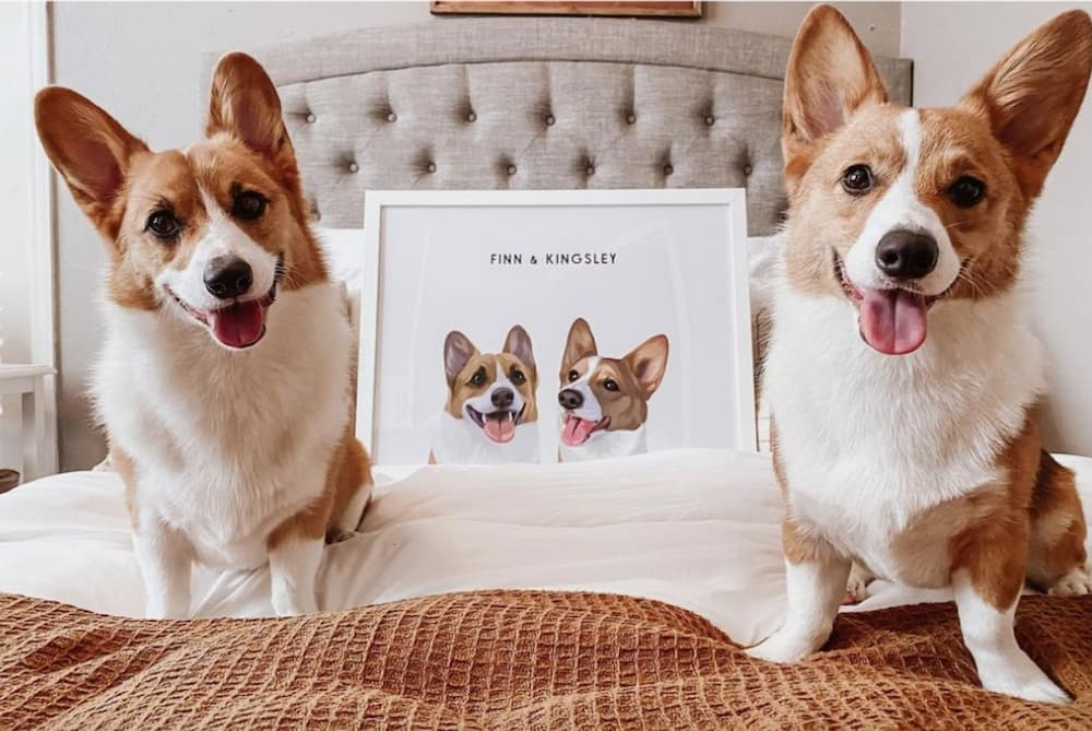 West & Willow custom dog print, best gifts for dog lovers