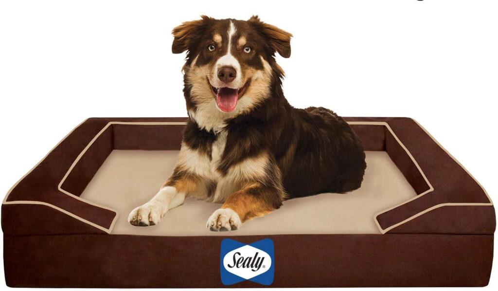 sealy orthopedic dog bed