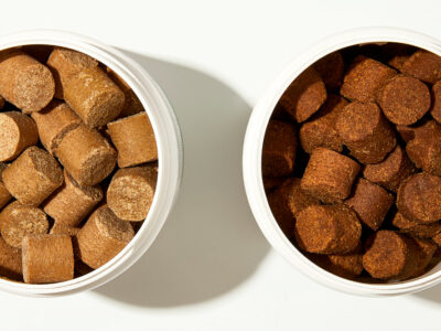 Calming Treats for Dogs: Ingredients to Look For