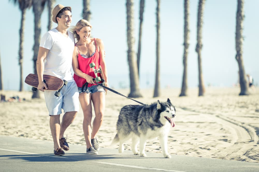 The Best Dog Parks in Los Angeles: The Definitive List